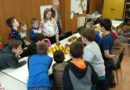 Okresní kolo přeboru družstev škol Havlíčkobrodska v šachu 2019/2020 – výsledky